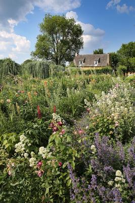 Le jardin fleuri, nouvellement créé.