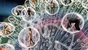 À la Grande Galerie de l'évolution(Ve), levisiteur se plonge dans la connaissance de l'arbre du vivant.