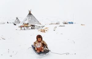 Jeune enfant Nenet, dans l'Oural artique, Russie, par Michel Rawicki.