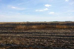300 hectares sont partis en cendre dans le Centre et le Val de Loire. (Crédit photo/DR)