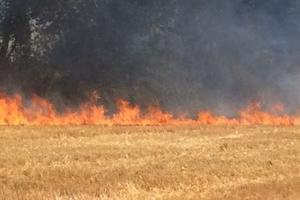 La moisson a du être interrompue dans une ferme de l'Oise où 10 hectares ont flambé. (Crédit photo/DR)