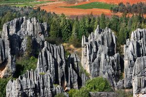 La forêt de pierre de Shilin.