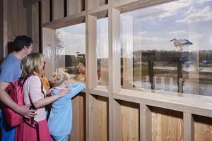 Un poste d'observation des oiseaux au Zwin Parc Nature, qui voit passer plus de 200 espèces de migrateurs.