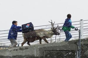 Une session de formation dans la ville glaciale d'Ishikari sur l'île d'Hokkaido.