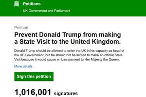 La pétition a dépassé le million de signatures lundi matin sur le site du Parlement.