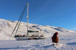 Le bateau Yvinec sur son lieu d'hivernage.