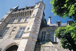 Le château de Talcy (X. Anquetin)