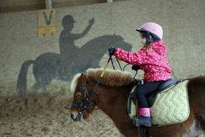 Plus petit qu'un cheval, le poney a beaucoup de succès auprès des enfants.