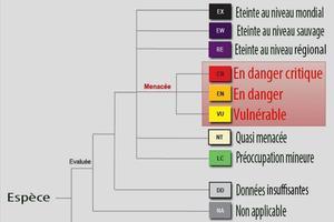 le classement de l'UICN