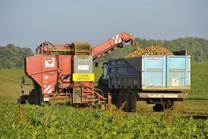 En France, le bioéthanol est issu de la filière agricole.