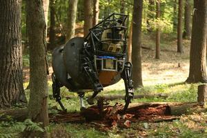 L'AlphaDog est un robot de transport de charges lourdes développé par Boston Dynamics pour l'armée américaine.