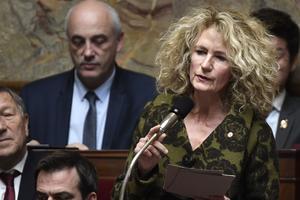 Martine Wonner avait défendu des amendements sur la proposition de loi sur la rétention des «dublinés».