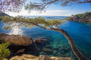 Vue imprenable sur la Méditerranée