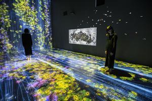 Dans les installations du collectif japonais teamLab, les tableaux changent au gré des mouvements du public, à la Villette (XIXe).