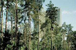 Le jardin de la BnF (XIIIe).