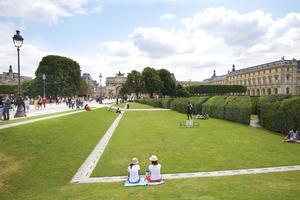 Le jardin des Tuileries (Ier).
