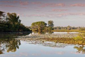 Parc National de Kakadu - Australia