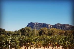 Le pic, côté face Nord pour les sportifs, et terres viticoles pour les amateurs...!