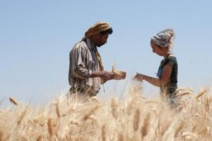 L'archéologue Amaia Arranz Otaegui et son assistant Ali Shokaiteer assemblant des céréales sur le site de Shubayqa.