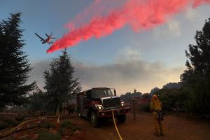 Des milliers d'hectares ont brûlé.