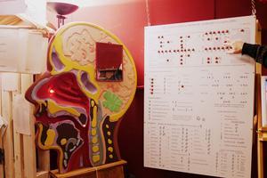 Mundolingua, un musée ludique et original pour comprendre le rôle et l'évolution des langues et du langage.