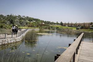 Dans le parc Ariel Sharon, une des merveilles de recyclage au monde.