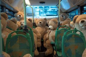 Au fond du bus, les témoins des mariés sont déjà bien dissipés.