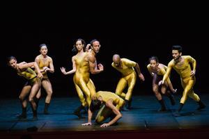Les vingt-six danseurs de la troupe sont restés muets sur les coulisses de l'exercice.