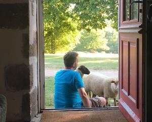 Les résidents peuvent entrer en contact avec les animaux présents sur-place