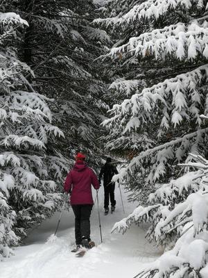 Un autre type de ski se pratique ici: le ski Hok, à mi-chemin entre la raquette (deux sangles à cliquet maintiennent la botte en place) et le ski de randonnée.