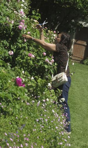 Rachel Lévy ceuillant des fleurs dans le potager fleuri de Saint-Jean de Beauregard.