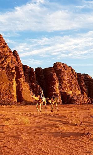 Rencontre dans le désert du Wadi Rum.