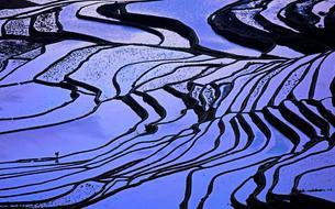 Le Yunnan en Technicolor