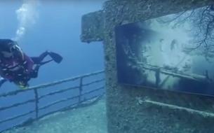 En Floride, une exposition sous-marine à visiter avec des palmes