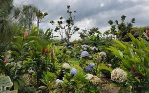 Nos bonnes adresses pour visiter le Costa Rica autrement