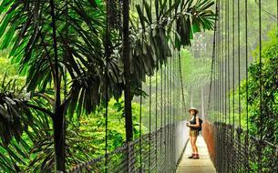 Le Costa Rica, concentré unique de biodiversité