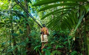 Revivez «Terminal F» spécial (sur)vie de l'Amazonie à la Sibérie