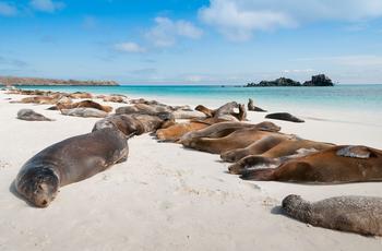 L'archipel des Galápagos.