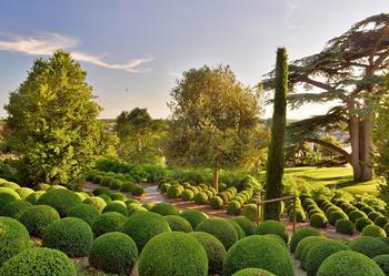 Le jardin du château d'Amboise.
