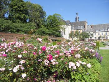Les jardins de l'abbaye de Valloires abritent une riche collection de rosiers.