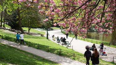 Paris : bientôt des parcs ouverts très tôt le matin