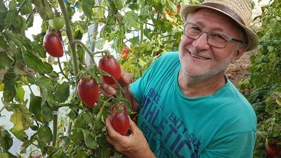 Pascal Antigny demain dans ses mains 'Pascal de Picardie', une variété récente qu'il a développée et qui porte son nom