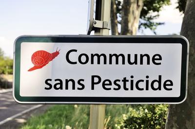 Depuis le 1er janvier, l'usage des pesticides est interdit dans les espaces verts appartenant à l'Etat, aux collectivés locales ou aux établissements publics.