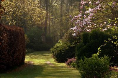 Un arboretum paysager conçu comme une suite de tableaux.
