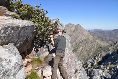Robert Blackhall-Miles lors d'une expédition en Afrique du Sud