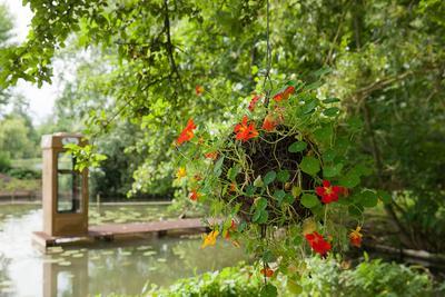 «Fragments» du collectif Gama, s'inspire du kusamono, une technique japonaise d'art floral qui signifie littéralement «herbe-objet». Au second plan, l'«Hydrophone», du collectif PIP Partnership Ltd.
