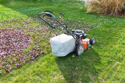 En tondant en même temps gazon et feuilles mortes, on gagne un temps précieux. Et on fait un bon compost!