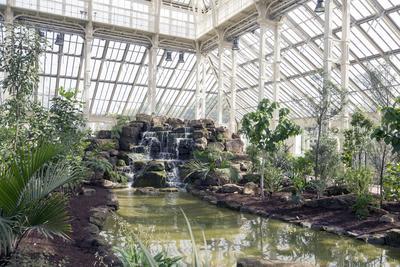 L'intérieur de Temporate house comporte de nombreux parterres, allées, cascades, et pièces d'eau.