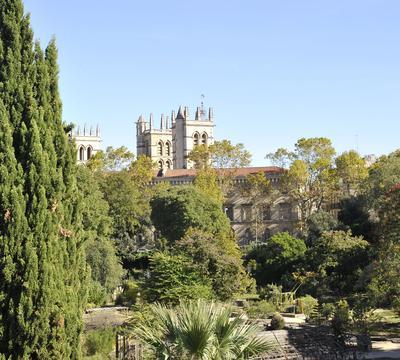 Le jardin des plantes crée en 1593