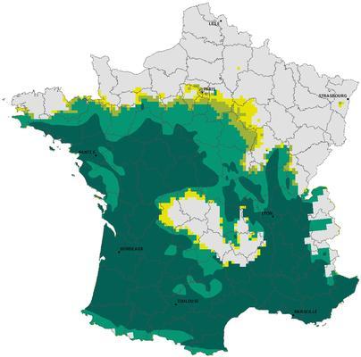 Carte de répartition de la chenille processionnaire du pin à l'hiver 2015-2016. Source: Inra Orléans/Val de Loire.